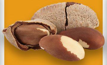 Спечелете 10 награди – ядки бразилски орех