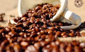 Спечелете кафе Poli Costa Rica-Speciality Coffee